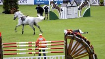 Irish Rider Dave Quigley Falls Off - Dublin Horse Show Puissance 2011.