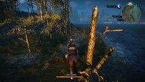 The Witcher 3: Wild Hunt - Uhhh...Roach?