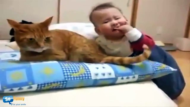 Funny cats and babies playing together Baby And Cat Videos Compilation