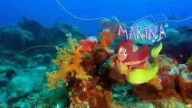 Zig & Sharko - Mermaid in the Sky - Zig and Sharko the best cartoon and cool episodes 2015