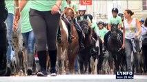 La Flèche : 400 cavaliers au 23ème Randonnée Régionale Poney
