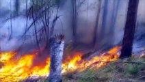 Des feux de forêts continuent de ravager les pourtours du lac Baïkal