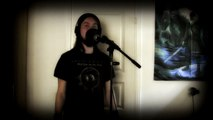 Rammstein - Reise, Reise (vocal/guitar cover)