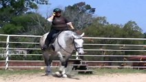 Ruth and Willie Parelli Audition Freestyle Level 3.wmv Passed 3 +