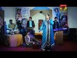 Tere Bin Yaar Honda Nai | Erum Sayal | New Saraiki Song | 2015 Song
