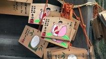 Kanamara Matsuri - かなまら祭り (Fertility Festival) Japan