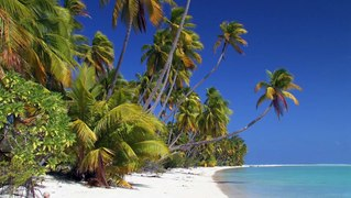 CDM ILES LOINTAINES DE POLYNESIE Tuamotu Marquises