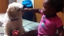 [CAT] Funny pictures of cats and dogs animals   Cute Babies Love Funny Dogs Compilation 2015