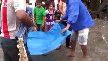 Boy gets devoured by piranhas