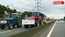 Rocade de Rennes : les agriculteurs de retour de Paris