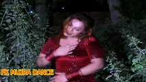 Dil Dharkta Mera - Pakistani B Grade Mujra No.32 - PK MUJRA DANCE