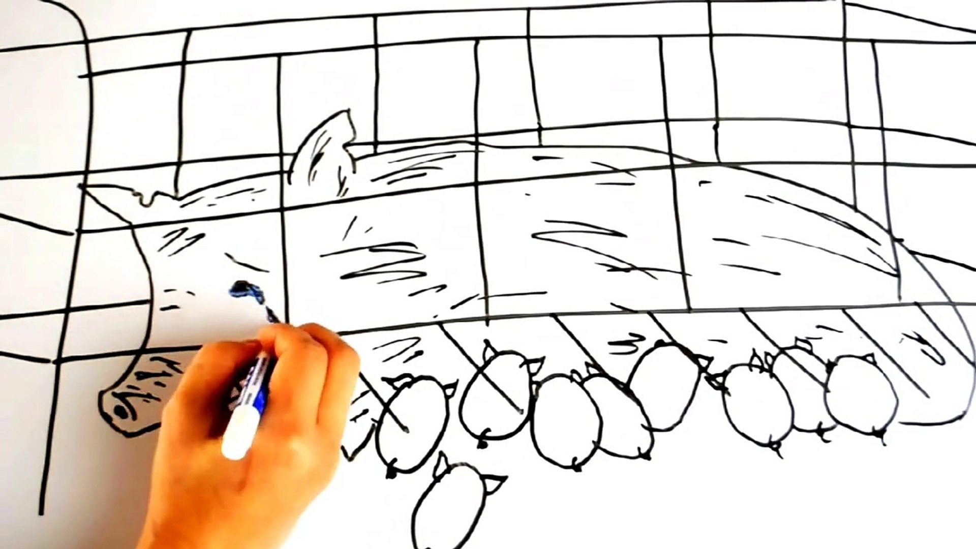 [Tuttorial Draw]How to draw a litte pig?