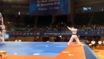 Taekwondo Jump Punch Kick