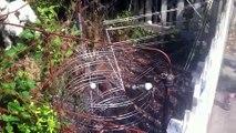Oregon Resident Builds Golf Ball Roller Coaster