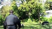 pit bull got shot - boo got shot rap version