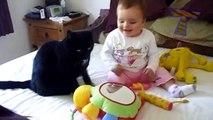 De drôles de chats, et des bébés à jouer ensemble Mignon de chat et bébé compilation