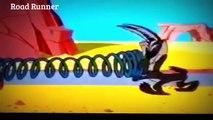 Road Runner and Wile E Coyote  BEEP BEEP  Classic Cartoon