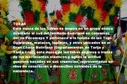 Tobas Bolivia Danza Tradicional - Voces Morenas - Bolivian Folklore