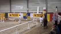 Narco-Z-@-Belgian-championship-loose-jumping-