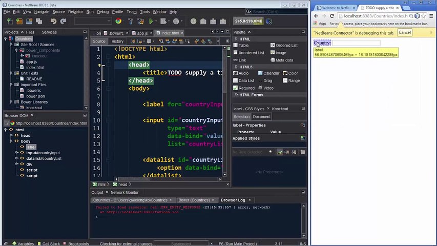 New Features in NetBeans Connector Plugin for Chrome