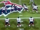 Madden NFL 2005 PC : Houston Texans