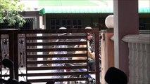 archi short film : RAGAM BDAK ARCHI