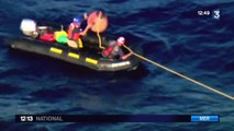 Californie : une baleine bleue piégée dans un filet de pêche
