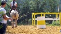 Equitation de travail concours avec ROBADOR etalon du Quercus