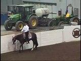 Quarter Horse Congress 2008 - Relander QH