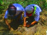 Bitácora del Arqueólogo, Cap. VIII Palenque