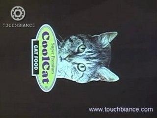 Touchbiane