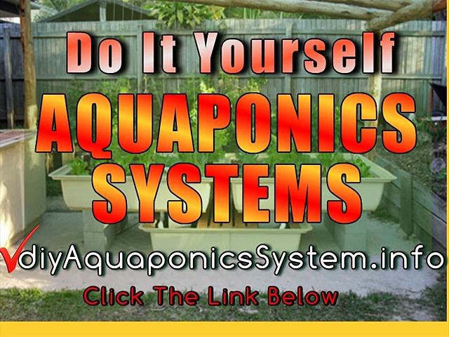 Easy DIY Aquaponics in Maunaloa