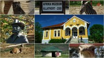 Afrika Múzeum