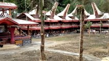 Paul Sipayung's Family at Pemakaman Nene Sarrin ~ Sereale (Toraja) - Tedong Salego
