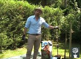 Planter un arbre fruitier - Mon Eden