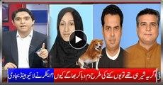 Lions Of PMLN Talal Ch. Daniyal Aziz and Saira Afzal Tarar Run Away - Anchor Lively Xposing