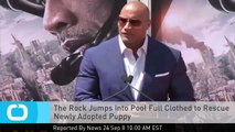 The Rock Jumps Into Pool Full Clothed to Rescue Newly Adopted Puppy
