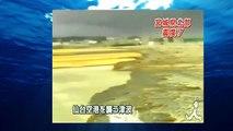 JAPAN TSUNAMI Footage. Japan Tsunami 2011 [Sendai Airport]