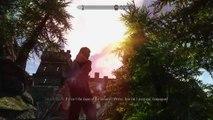 Elder Scrolls V  Skyrim ENB mod Nvidia ShadowPlay GTX980