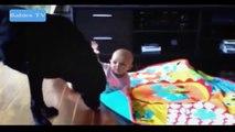 Funny Babies Funny Videos Funny Fails 2015 - Funny Baby Videos | funny baby videos falling