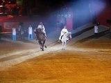 Chameau éduqué - carrousel en duo avec un cheval