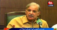 Quaid-e-Azam Solar Park project being tried to make controversial CM Punjab