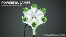 Best Photo/Video light bank LINCO FLORA