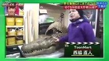 [ Funny Japanese game show ENGSUB ] - Humans vs Crocodile Engsub
