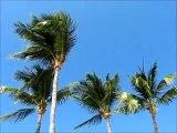 Caribbean Weather: Do You Prefer Sunshine or Hurricanes?