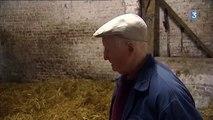 Emile, 89 ans et une passion toujours dévorante pour les chevaux Boulonnais