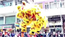 Eaton Hotel Hong Kong香港逸東酒店‧2015 Lion Dance Parade 農曆新年醒獅表演 | Dane Was