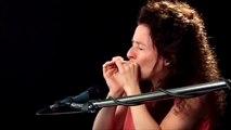Harmonica Lessons - #15 Hey Gary! - Blues Harmonica Blueprint - Annie Raines