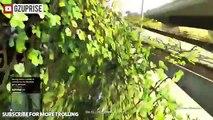 VANOSSGAMING TROLLING! KID IS  VANOSSGAMING  ON GTA 5 Online PART 2 Vanoss GTA 5 Trolling1