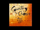 Counting crows - Colorblind lyrics
